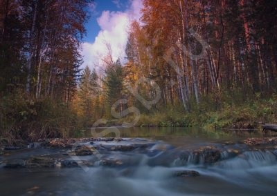priroda-ust-aleus-_15
